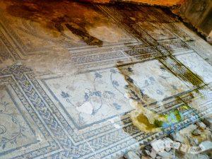 Mosaicos de Domus Romana