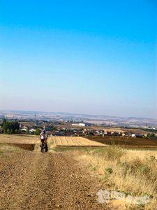 Camino a Montamarta (Roales al fondo)
