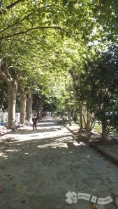 Jardines del Cantón de Molín