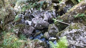 Río Cuberto