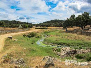 Arroyo de la Dehesa