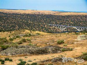 Divisandp el Río Almonte