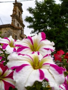 Iglesia de Santa Eulalia (Agés)