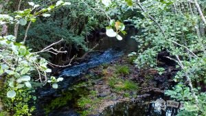 Río Sionlla