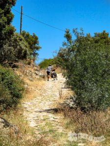 Pista hacia Aldeanueva del Camino