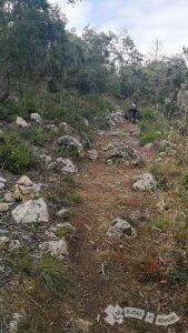 Piedra y roca en el sendero