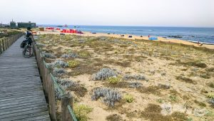 Praia das Pedras do Corgo