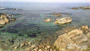 Detalle de costa