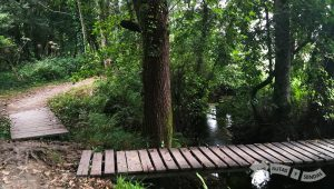 Senda Fluvial del Río Tomeza