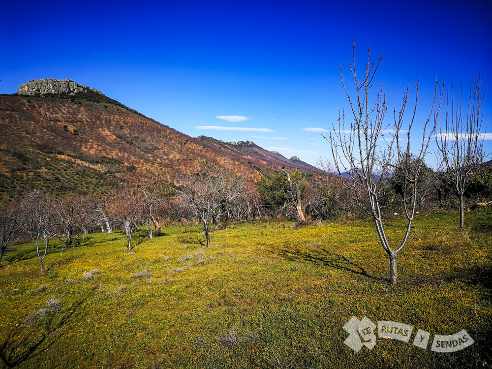 Descendiendo por le Valle del Almonte