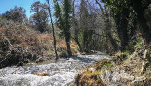 Arroyo de la Garganta de Santa Lucía