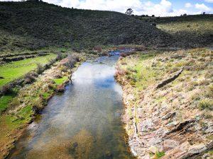Río Huso