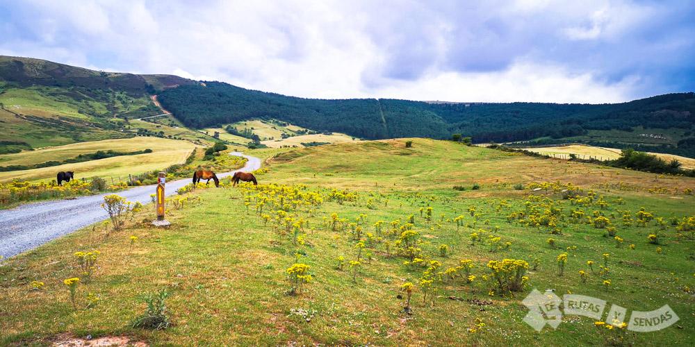 Valle de la comarca de Campoo