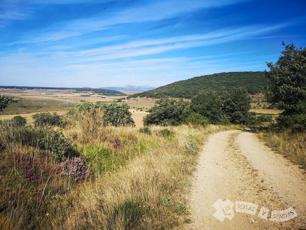 Entrando en Palencia