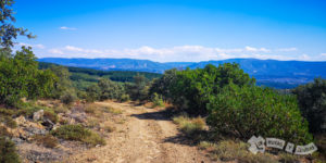 Monte de Sardonal