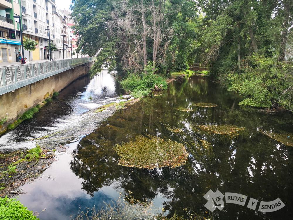 Río Sarria