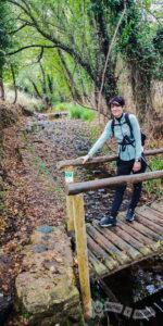 Pasarela de madera en rl Barranco de los Casares
