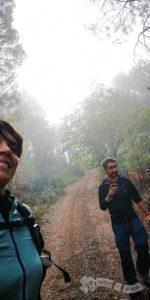 Niebla en el sendero
