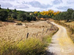 Hacia el Arroyo Guijarra