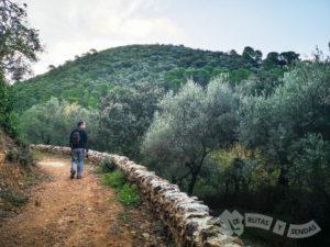 Sendero de Linares de la Sierra - Aracena