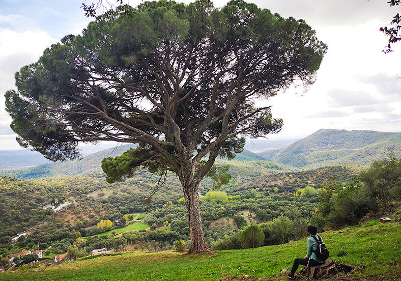 ETAPA 1 · Santa Ana La Real – Linares de la Sierra