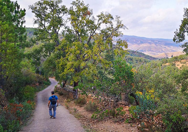 ETAPA 2 · Linares de la Sierra – Cortelazor