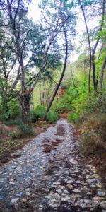 Por la Vía Verde