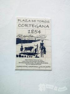 Detalle de la Plaza de Toros