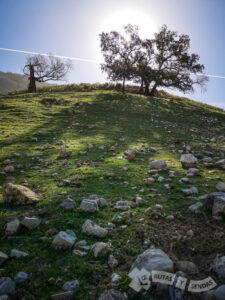 Suaves colinas en el sendero
