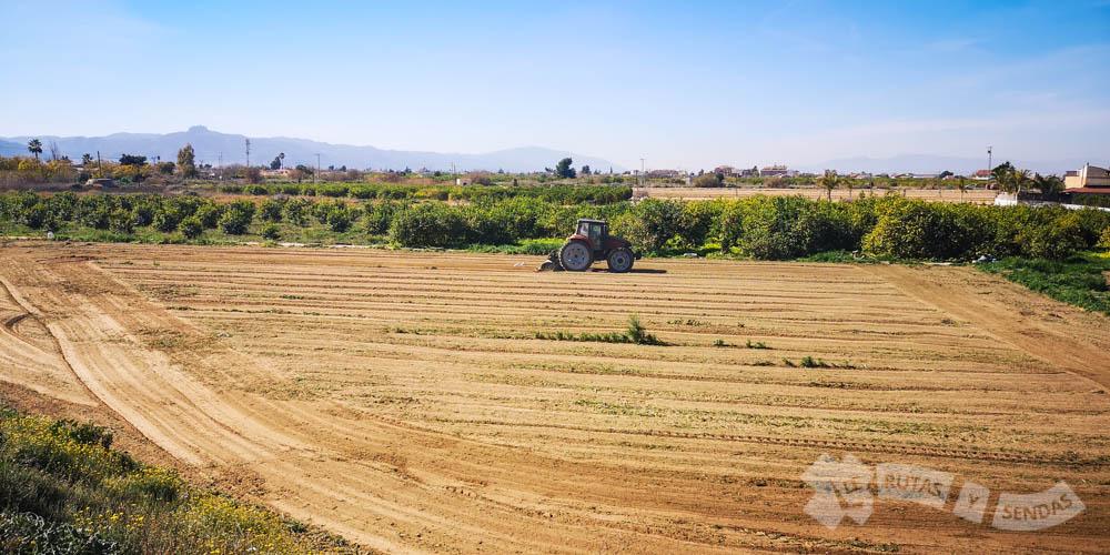 Estampas de la Huerta de Murcia