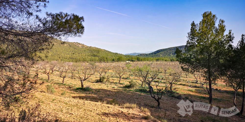 Cultivos en las inmediaciones de la Sierra de Burete