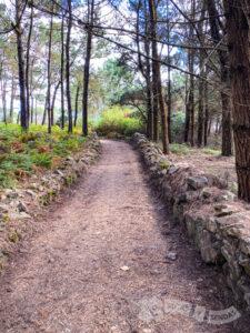 Surcando el Monte de Atalaia