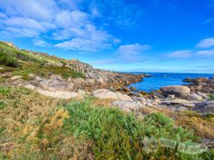 Por el litoral rocoso